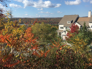 Buying Real Estate in the Fall