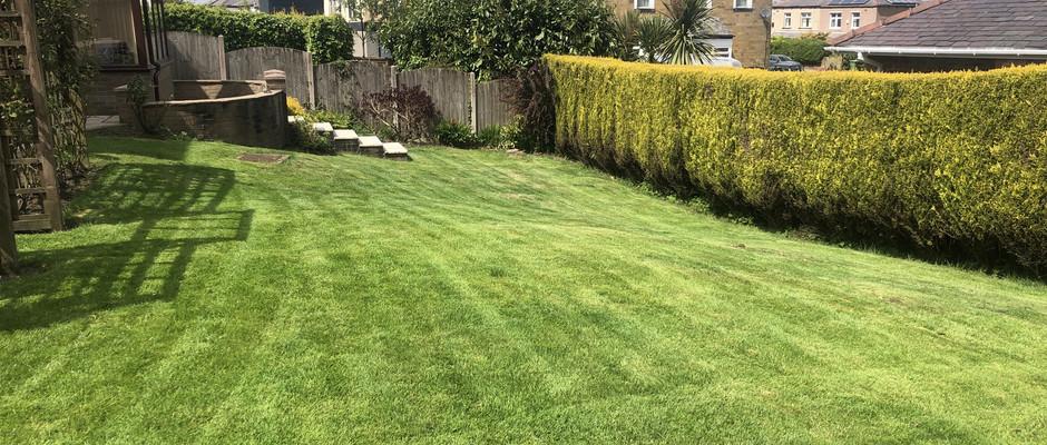 Regular Gardening Burnley