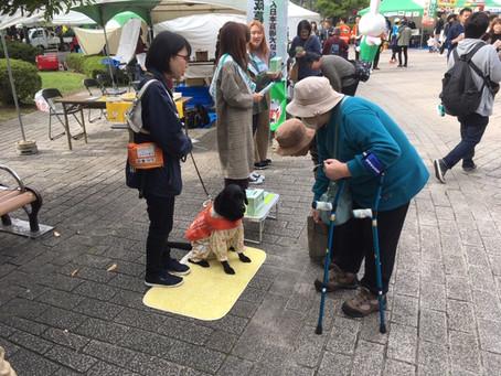 2019年青葉区民まつり 盲導犬育成募金