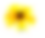 flower2yellow.png