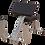 Thumbnail: Body-Solid GPCB329 Preacher Curl