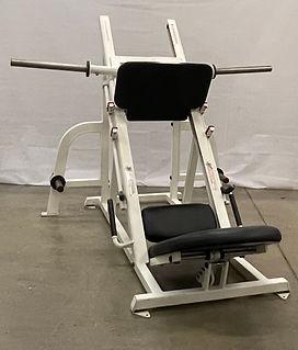Star Trac Angled Leg Press for sale