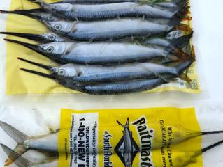 Best Frozen Offshore Bait Poco Bueno Port O'connor TX Fishing Tourney