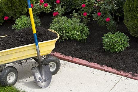 mulch-42236583.jpg
