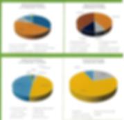 finances2018 site2.PNG