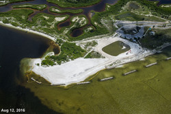 Apollo Beach Nature Park 8-12-16 2459