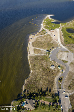 Apollo Beach Nature Park 12-11-14 566.jpg