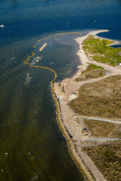 Apollo Beach Nature Rehab 1-7-15 458.jpg