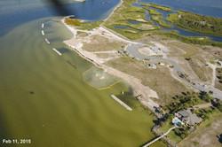 Apollo Beach Nature Park 02-11-15 03.jpg