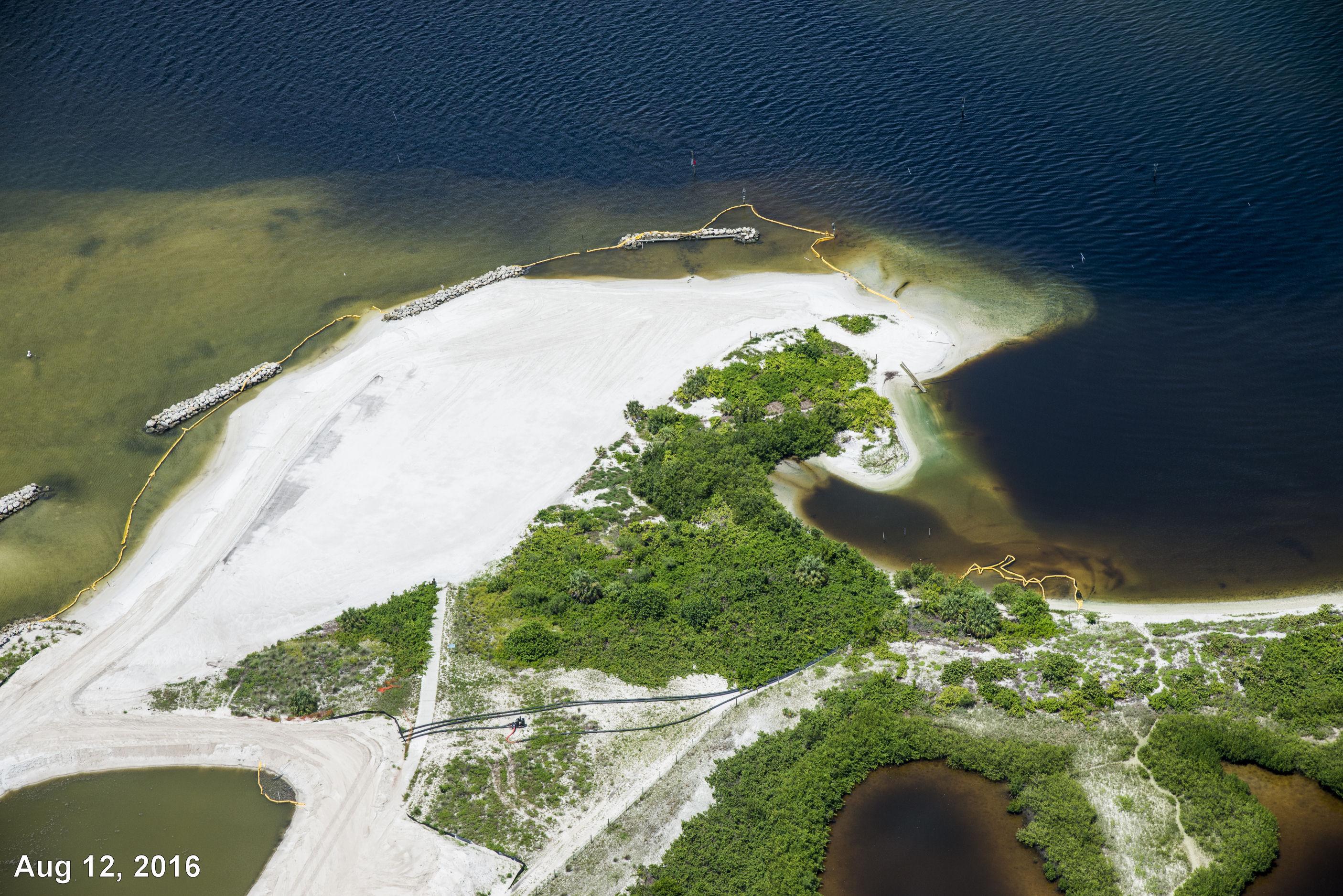 Apollo Beach Nature Park 8-12-16 2449