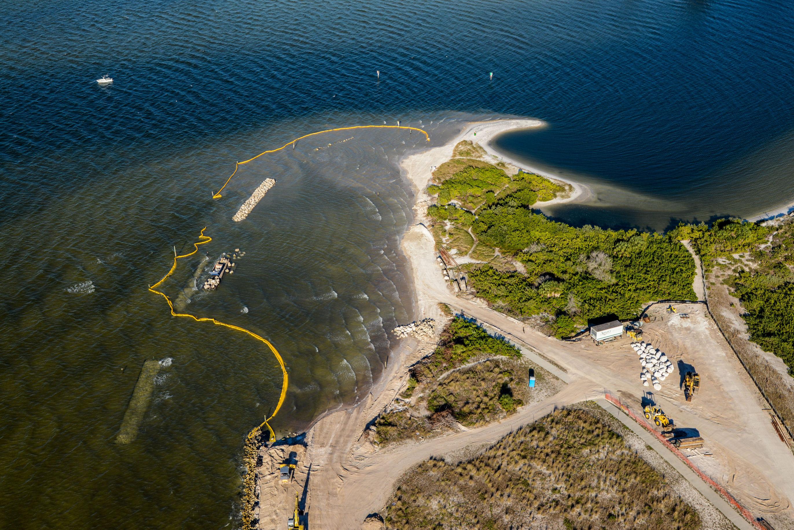 Apollo Beach Nature Rehab 1-7-15 459.jpg