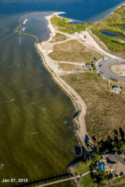 Apollo Beach Nature Rehab 1-7-15 457.jpg