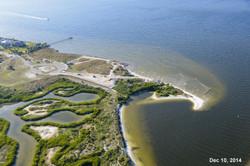 Apollo Beach Nature Park 12-11-14 553.jpg