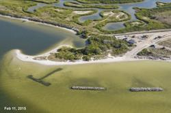 Apollo Beach Nature Park 02-11-15 05.jpg