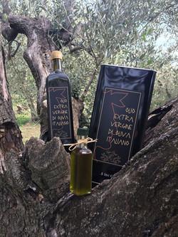 Bottiglie/Tanica Olio 2017