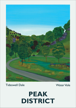 Tideswell-Dale.jpg