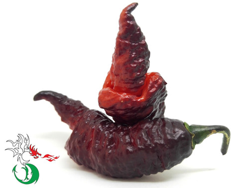 www.draxpeppers.com