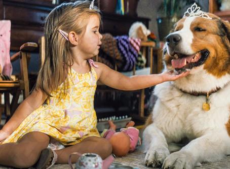 Putovanje jednog psa (2019.) - Najbolji film o psima desetljeća