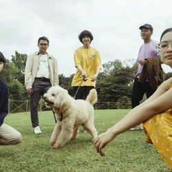 Woes LP「ZOODREAMS/WAKE UP PLS」release interview