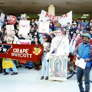 1stGrape_Boycott March94006 72 dpi resiz