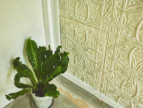 garden house_Wall texture