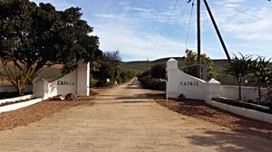 Capaia wine estate