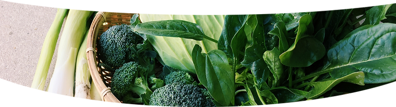 野菜3.png