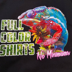 actual tshirt...we print full color dtg in addition to screenprinting..