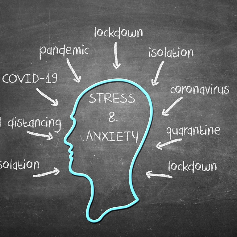 Embodying Emotional Wellness: Understanding Trauma & Stress