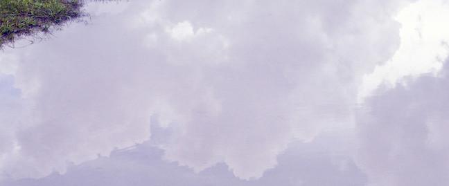 reverse skies