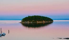 Island pink.jpg