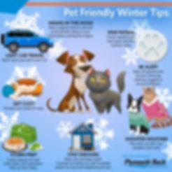 FB_ENT_Pet_Winter_Tips_Blog.jpg