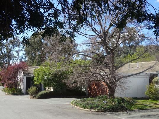 Hackett Townhouse Photo 4