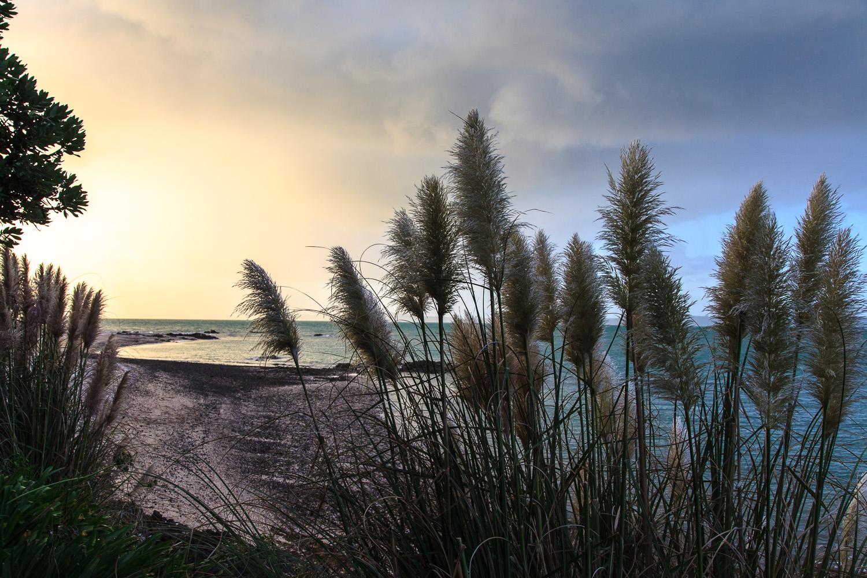 Omana Beach