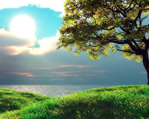 Eu Amo o Dia do Senhor » Robert M. McCheyne