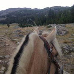Signe Wyoming trail ride