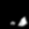 Logo_ongrandi_noir.png