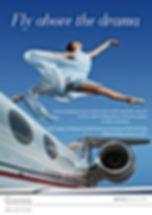 FlyAboveTheDrama.jpg
