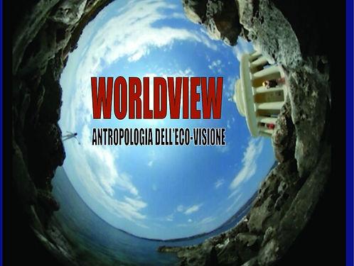 50-X100-worldview-Copia.jpg