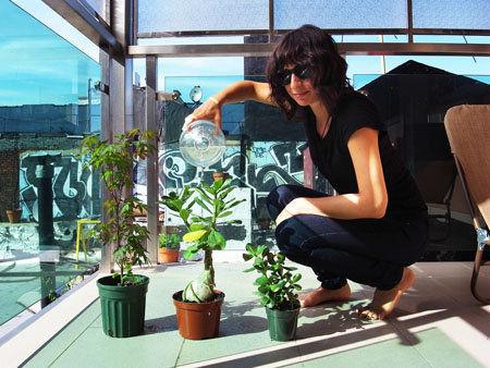 tara-plants.jpg