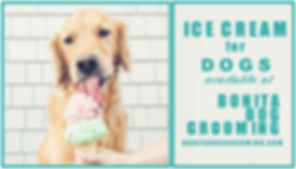 ICE CREAM FOR DOGS 3jpg.jpg