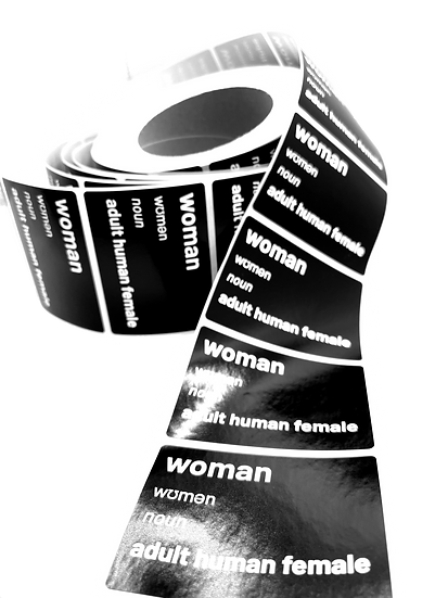 woman definition stickers