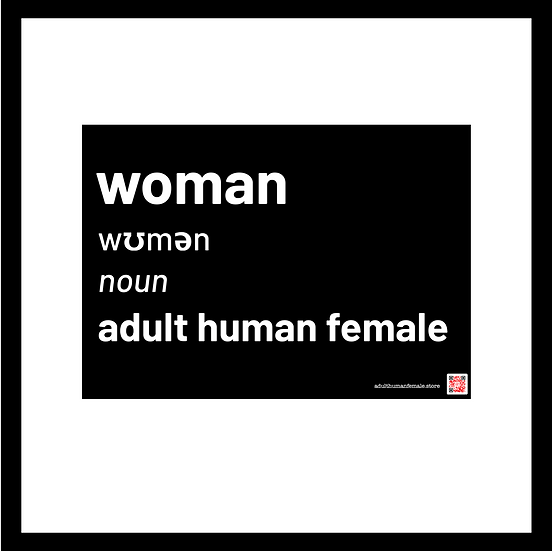 Woman definition - A4 mighty stickers