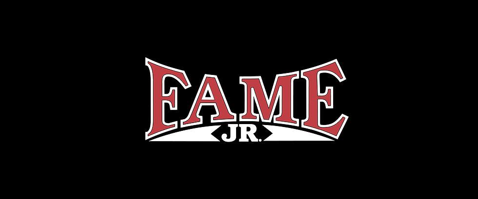 Fame Banner 2.jpg