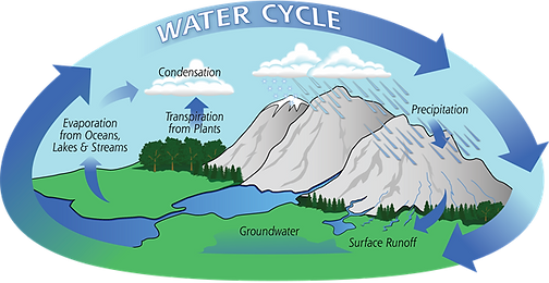 Water cycle Pic.png