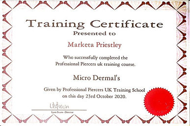 Micro Dermals Training Course.JPG
