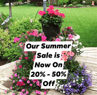 Summer Sale Now On...