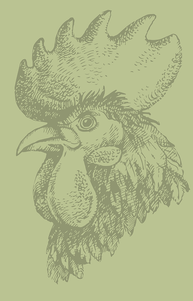 cock.png