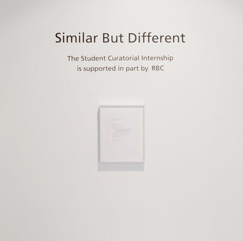 4-Similar But Different