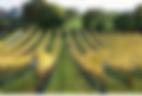 Schermafbeelding 2020-05-08 om 1.48.11 P